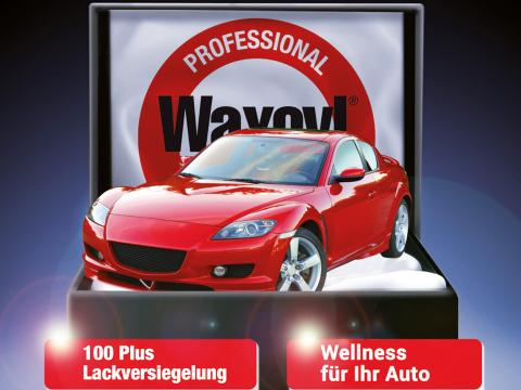 Lackversiegelung Waxoyl 100 Plus Bayern